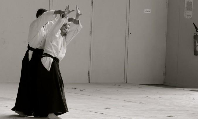 Koshi Nage Aikido Lesneven Gradings