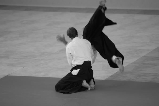 Hanmi Handachi Waza Scott Reed Yondan Aikido