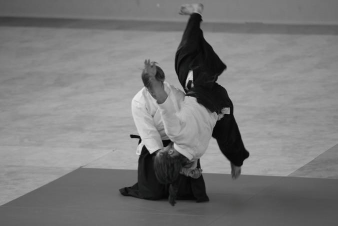 Hanmi Handachi Waza Yondan Scott Reed Aikido