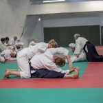 Edinburgh Aikido Toshiro Suga Course Paired Stretching